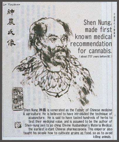 First Medical rec, nungzun